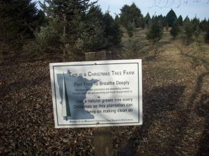 rp sign