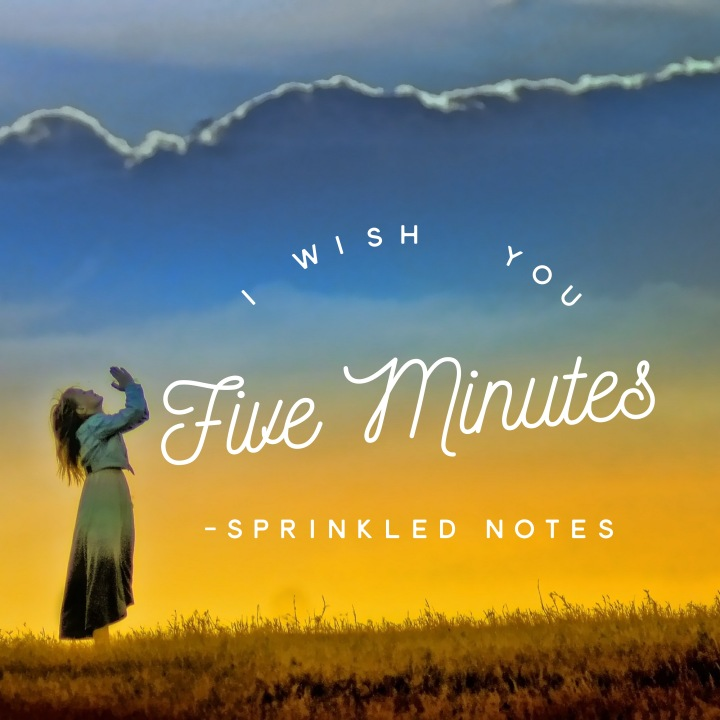I Wish You Five Minutes